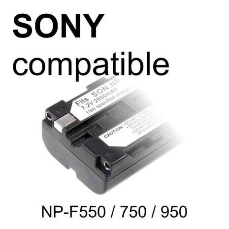 NP-FV100